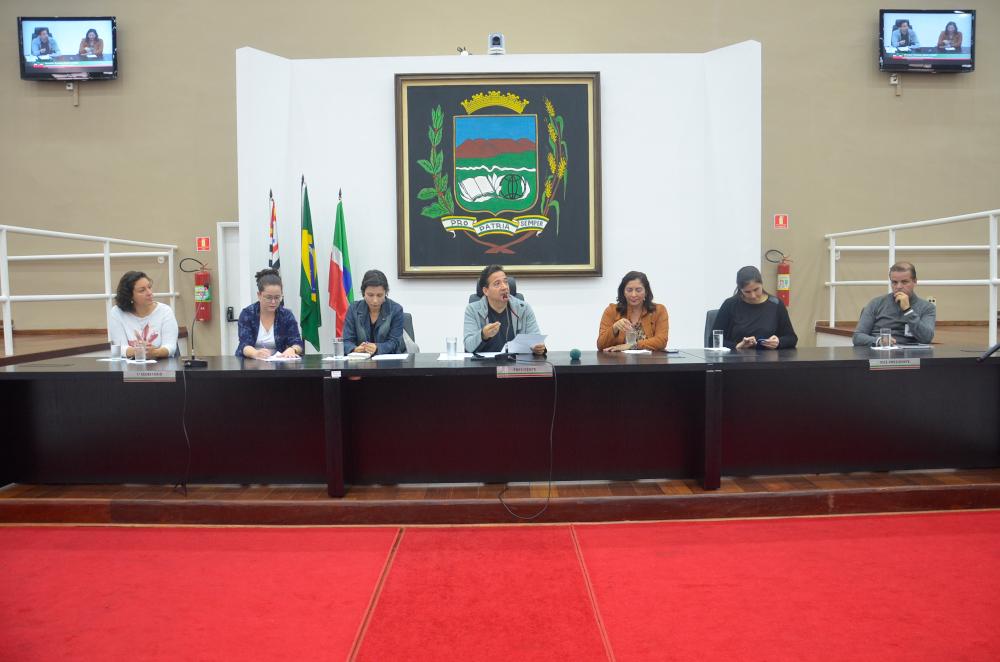 Audiência Pública na Câmara de Pindamonhangaba debateu o tema parto normal e a humanização da assistência às gestantes